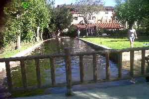 Piscina natural y chiringuito de verano   Piscina natural.